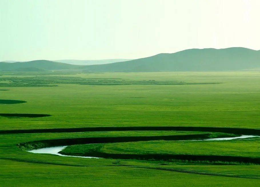 我对内蒙古的绿,起了相思