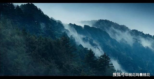 台湾赛德克族总人口_赛德克族