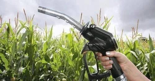 乙醇汽油和普通汽油有什么不同?加油站