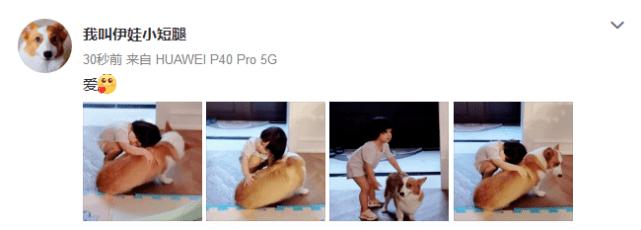 原创 杜若溪2岁女儿抱狗狗合照,一脸甜笑温柔又可爱,小长腿抢镜
