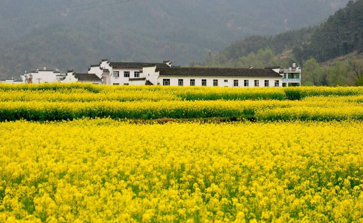 江南有个省份恨铁不成钢,四周都是经济强省,自己却没什么存在感