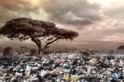 科学家发现新生物,它以垃圾为食,未来将能净化海洋环境