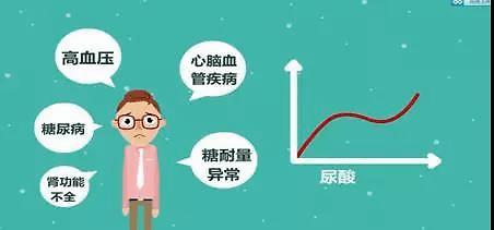 长期高尿酸会带来哪些并发症,你又知多少?