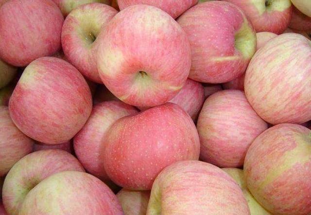 苹果和此物一起煮,每天一碗不失眠了,小肚子不鼓了,身材更苗条