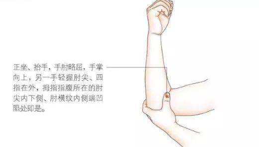 少海穴,在肘部的内侧面,治疗心痛,前臂内侧面的手酸麻