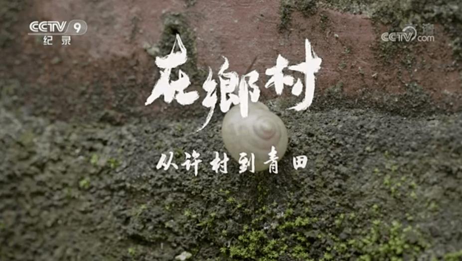 """纪录片《在乡村》聚焦""""青田范式"""" 顺德农村文明建设再上央视!"""
