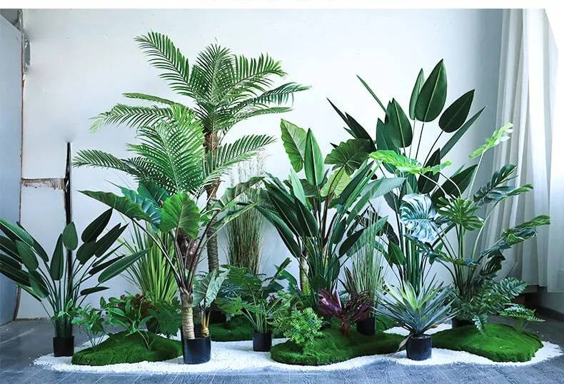 模拟植物有什么优点?