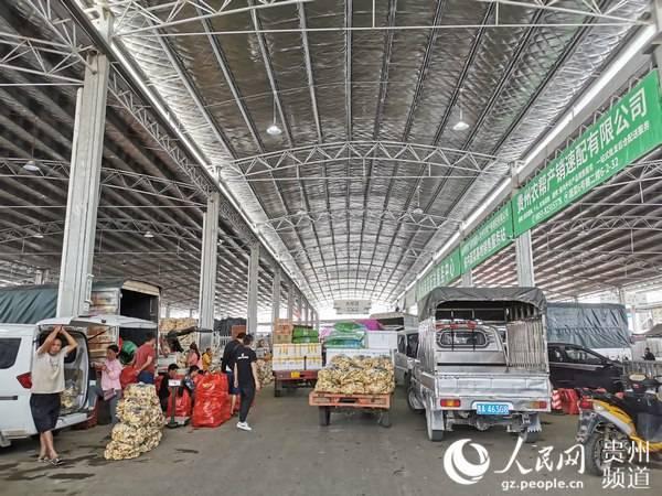 贵州贵阳:农业融入大数据脱贫增收添动力