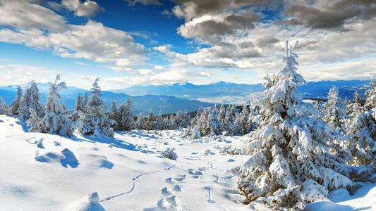 真相来了!气象学家指责所谓的60年最冷的冬天 没有科学依据