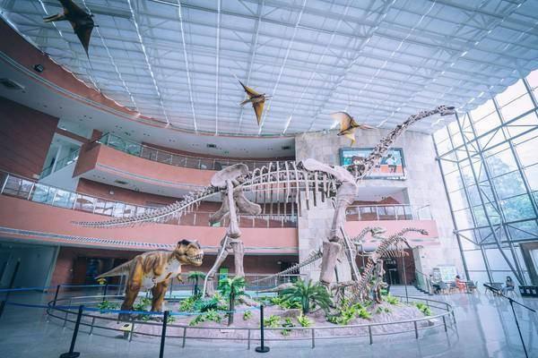 河源是恐龙墓园吗?怎么那么多恐龙汇聚于此,一起去看看!