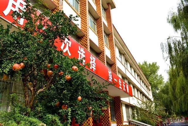 秋意浓 秋色美 | 最美校园秋景版——潍坊寿光市(一)