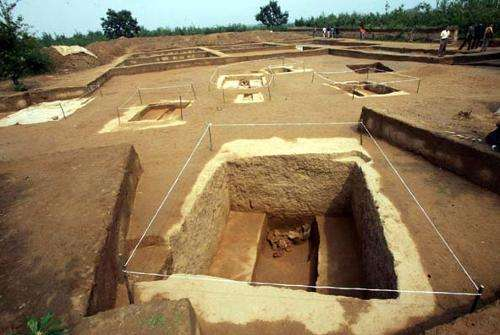 仰韶遗址出土的陶器上发现古人的指纹,经过研究,揭秘了这些信息