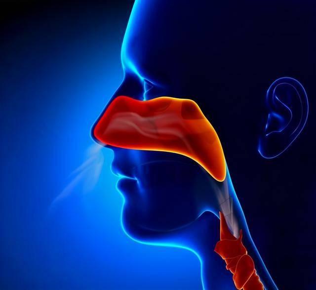 为什么鼻咽癌被称为广东癌?当身体出现这3种信号,都是在警告你