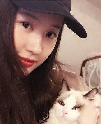 长得像猫的女明星_长得像猫的野生动物_长得像猫的人