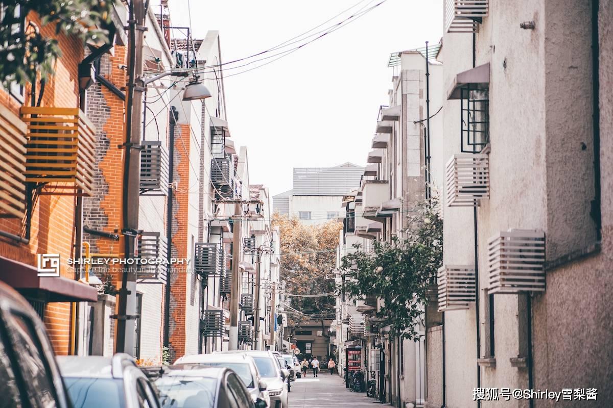 原创             这条上海传奇马路低调了百年,正是一年里最美的时刻,然而大部分游客从未听说