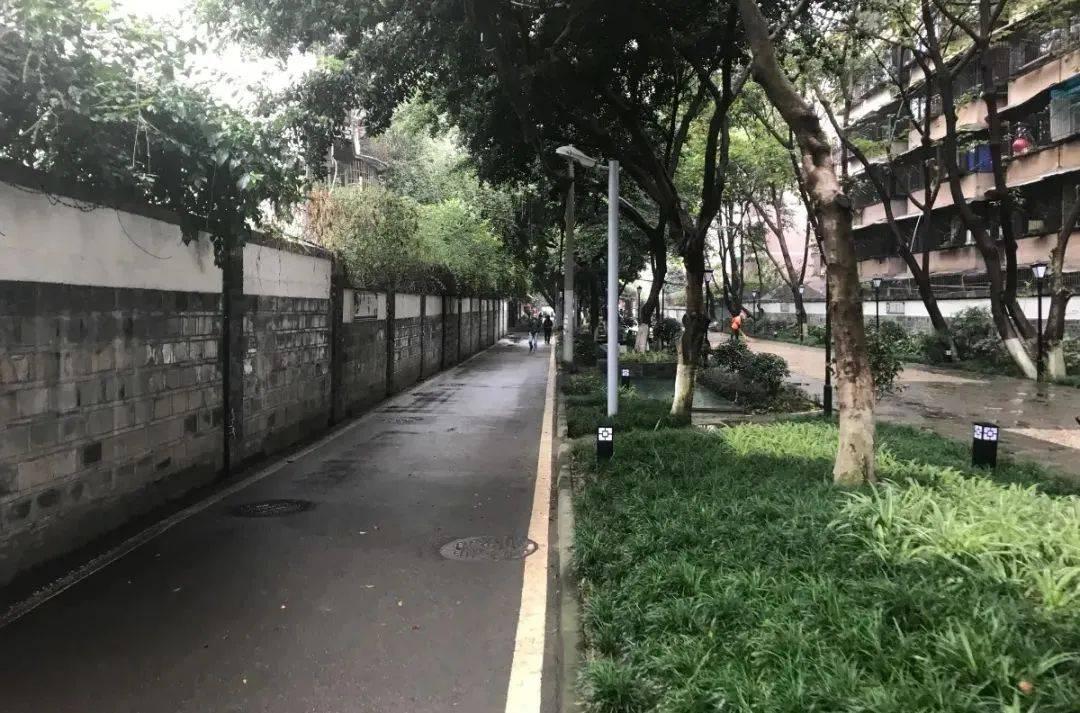 """一起见证!成都高新芳草街道的""""高颜值""""蝶变"""