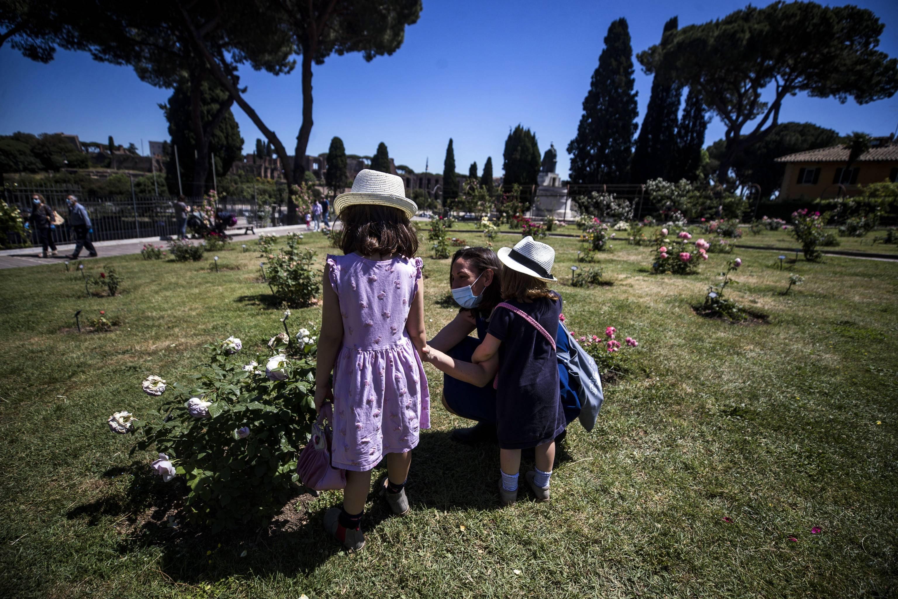 罗马:花园赏花