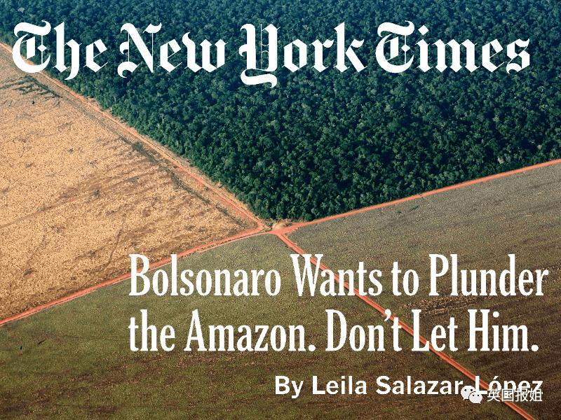 巴西总统上任1年,毁林,反智,灭族!这是要毁灭全人类?