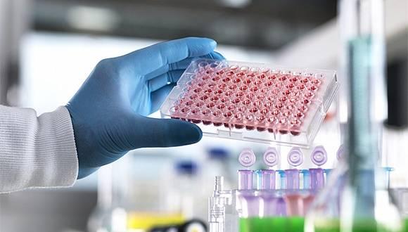 首个基于血清抗体的新冠病毒感染率调查结果发布