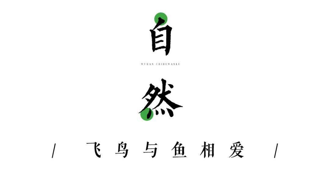武汉涨渡湖游玩攻略 俨然一幅绿野仙踪