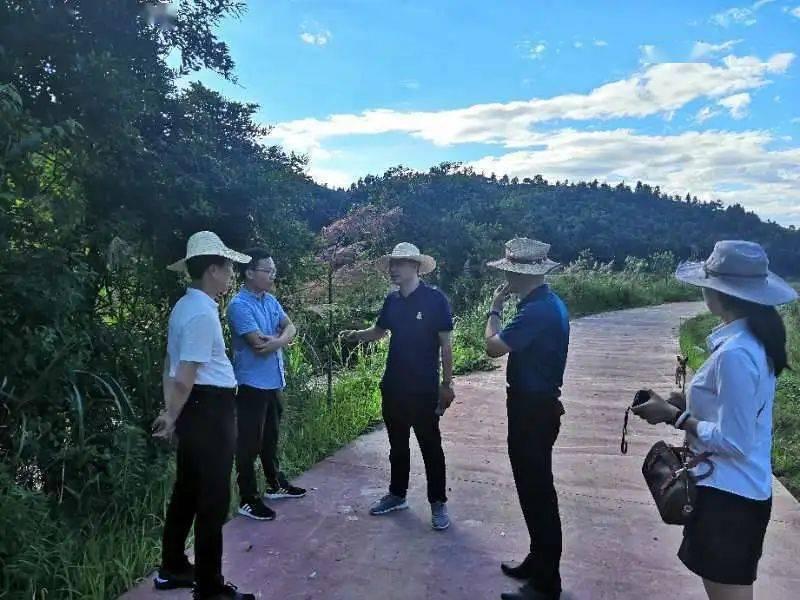 福建省花卉盆景有限公司总经理段军东一行到西
