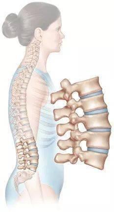 一套灵活脊柱的瑜伽体式,有效改善体态,越练越有气质!