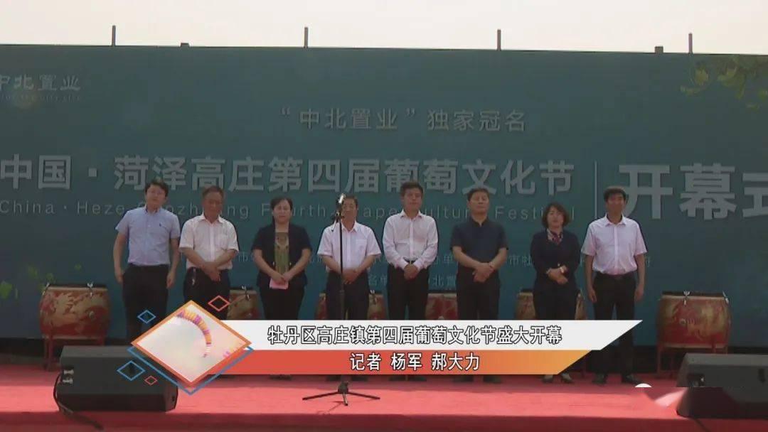 菏泽:高庄镇第四届葡萄文化节开幕