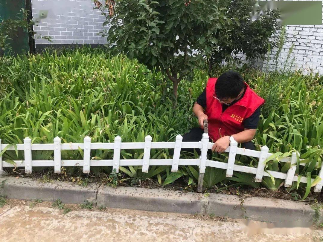 开发区王快镇 围栏篱笆让花园菜园有了 家图片