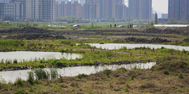 金隅地产首进上海内环以8.58万元/平方米创下年内上海楼面单价地王