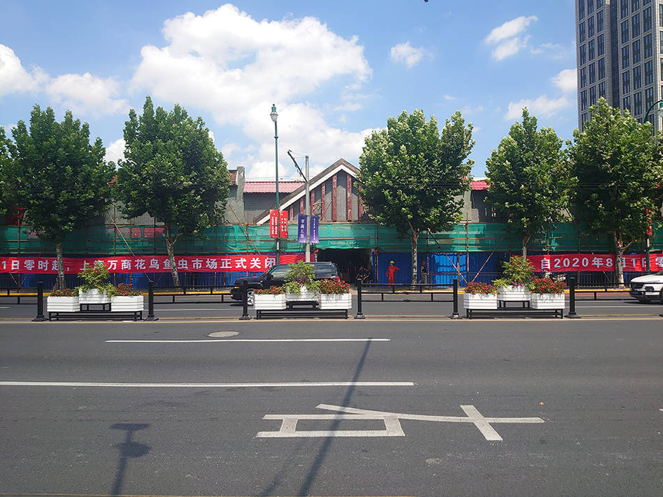 上海市中心最后一家花鸟市场今日关闭,我们见证了最后时光
