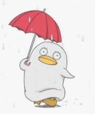 """?台风""""森拉克""""对梧州有影响吗?未来一周会大范围降雨吗?答案来了……"""