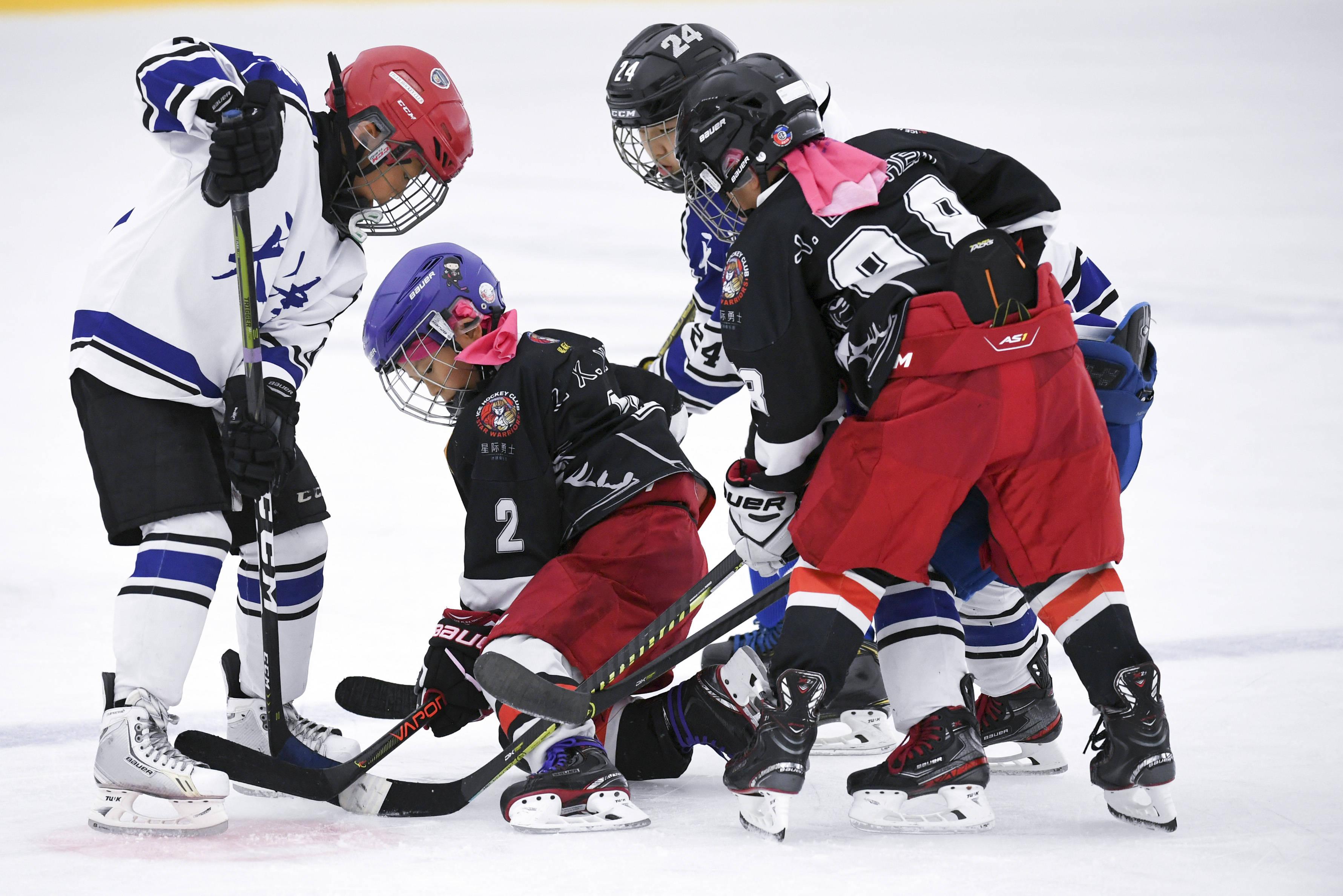 冰球——全国青少年冰球邀请赛U10组:天津队夺冠