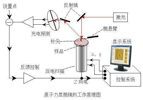原子力显微镜原理及应用
