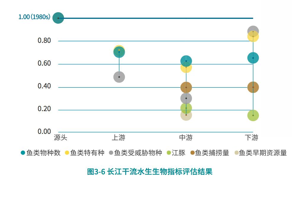 長江生命力報告④:干流各段水生態指數高低不一,中下游較差