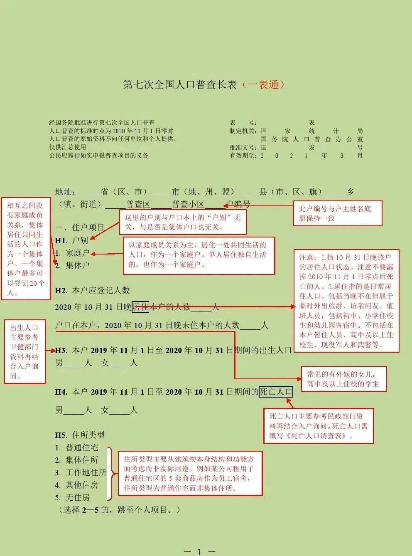 实用人口登记_普查人口登记表格图片