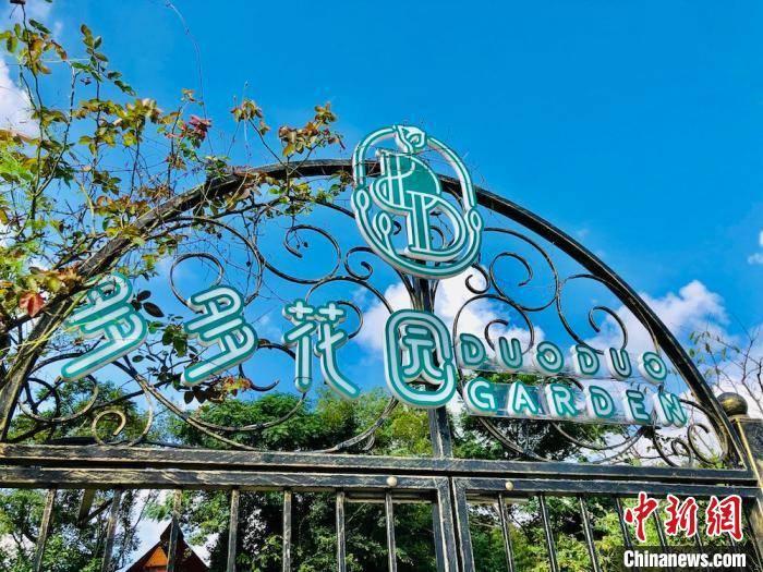 """无锡:男子徒手十年造园 打造远近闻名""""网红""""打卡地"""