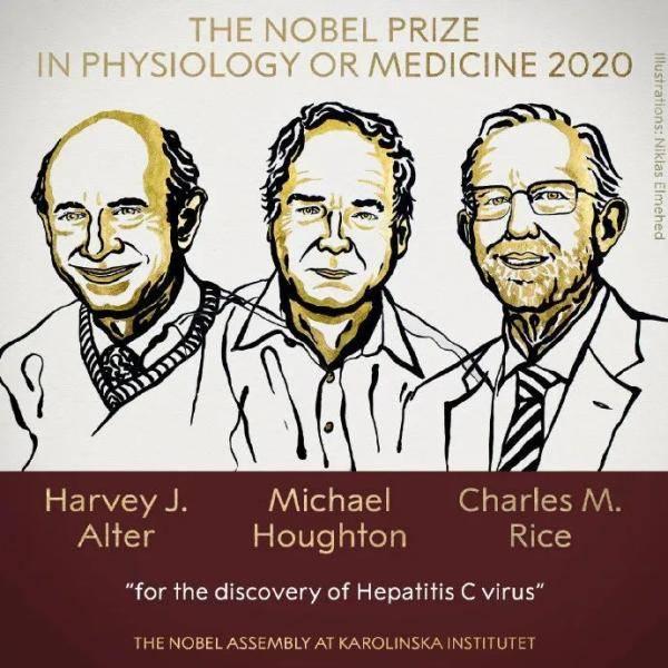 刚刚,2020年诺贝尔生理学或医学奖3位得主揭晓!今年的诺奖为何如此特殊→                                   图3