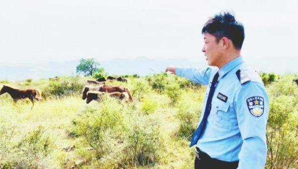 """双凤山""""野马""""守护者:把奔放的生命还给自然"""