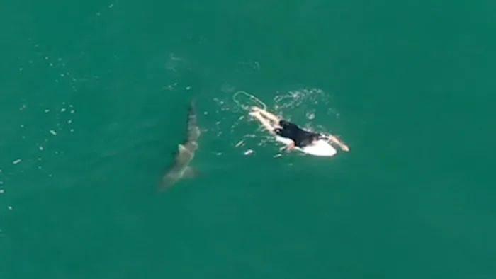 澳洲知名冲浪运动员险遭大白鲨袭击,都是多亏了它!