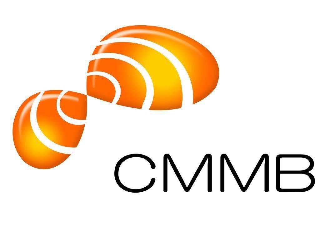 广电砸下百亿的 CMMB 手持电视,终究被时代抛弃了丨极客博物馆