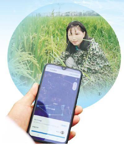 """农民想借卫星当""""顾问""""(金融眼"""