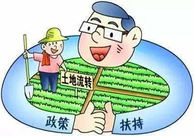 建行成功发放全线上信用农贷