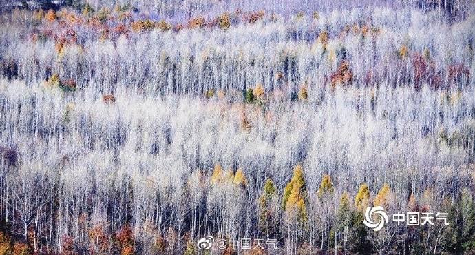 黑龙江威虎山:层林尽染美如画卷