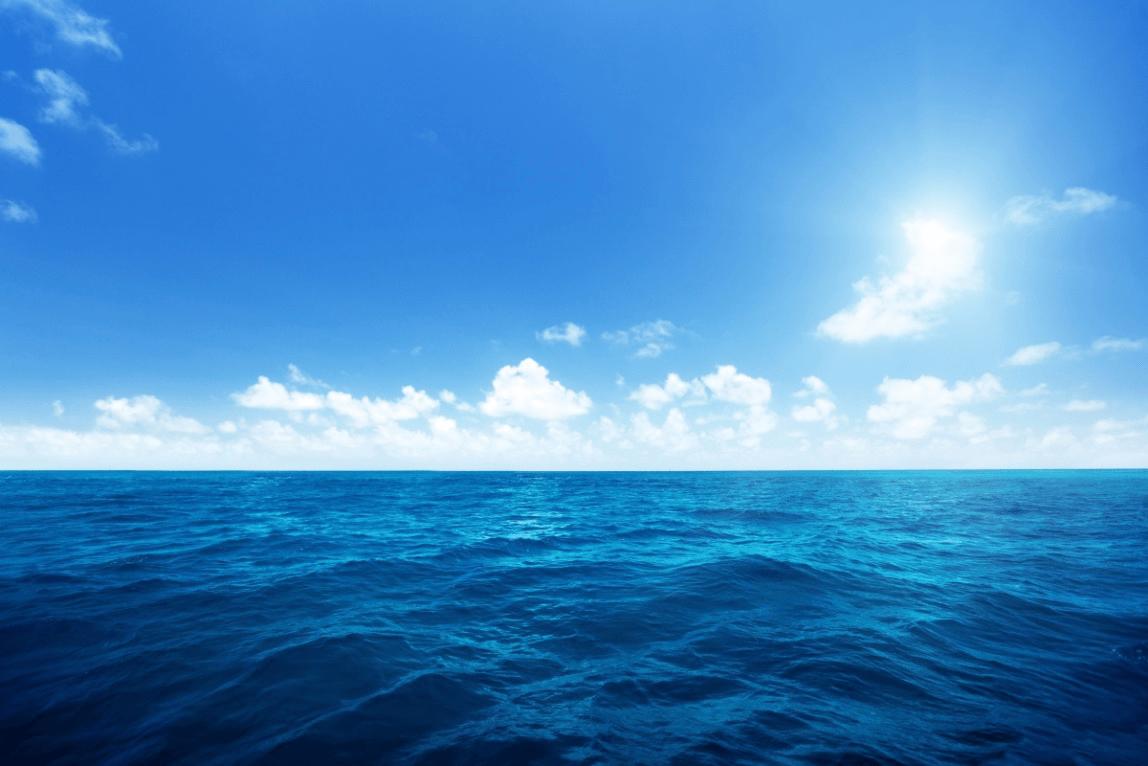 用心聆听海的心声