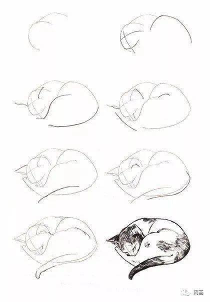 从头到脚教你零基础学会画猫咪