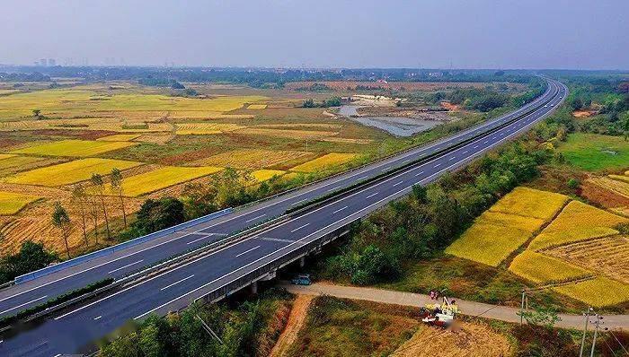 哪些省的高速公路财务风险高?
