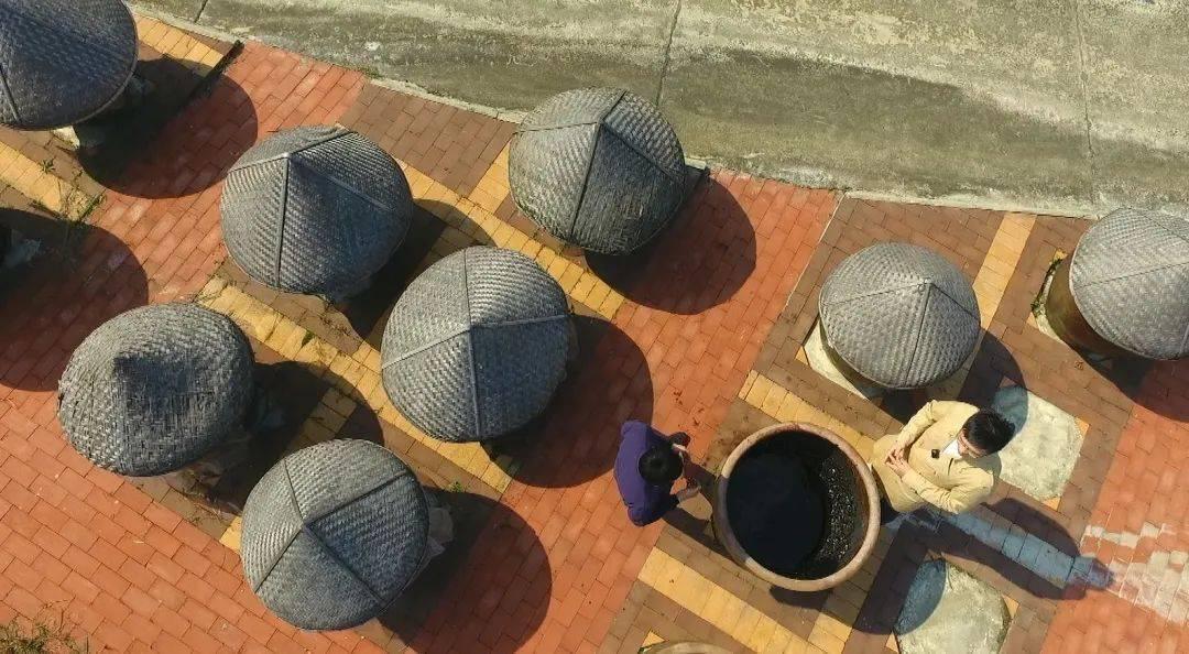 《身边的非遗·美食篇》:应城黄滩酱油
