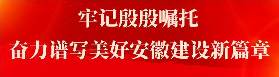 首创首成!安徽阜阳成功入选全国文明城市