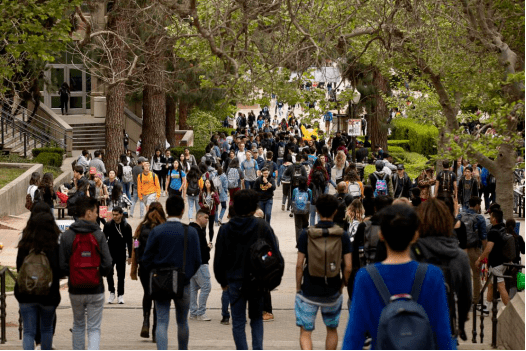不是UCLA的学生,你不会懂这些事!