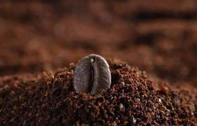 都说是现磨咖啡豆,现磨也不见得就是新鲜的! 博主推荐 第6张